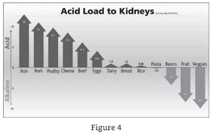 Acid Load on Kidneys How Not To Die.jpg