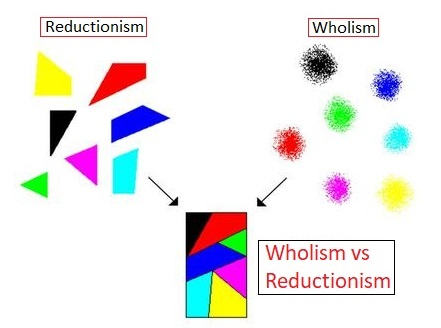 reductionism vs holism essay The paper will be five pages: (a) describe holism - 2 pages, (b) describe reductionism - 2 pages, (c) compare and contrast holism versus reductionism - 1 page apa format minimum of 4 professional/peer review references.