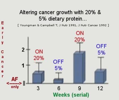 casein protein cancer