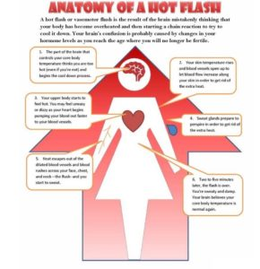 What helps hot flushes